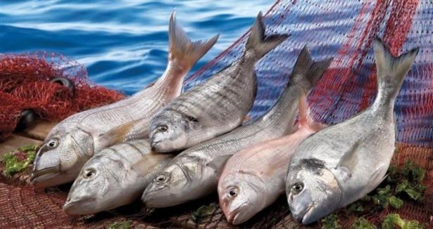 diyet balık çorbası