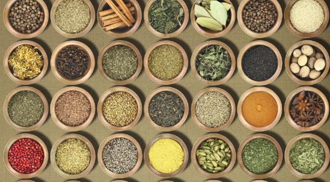 Sifali bitkiler ile zayiflamak sifali bitkiler kullanarak diyet yapmak