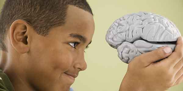 Beyne İyi Gelen Besinler